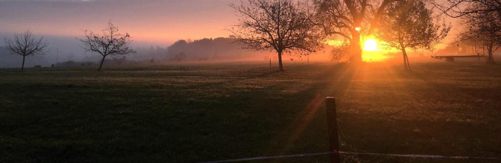 Gutsbetrieb Landwirtschaft Sonnenaufgang